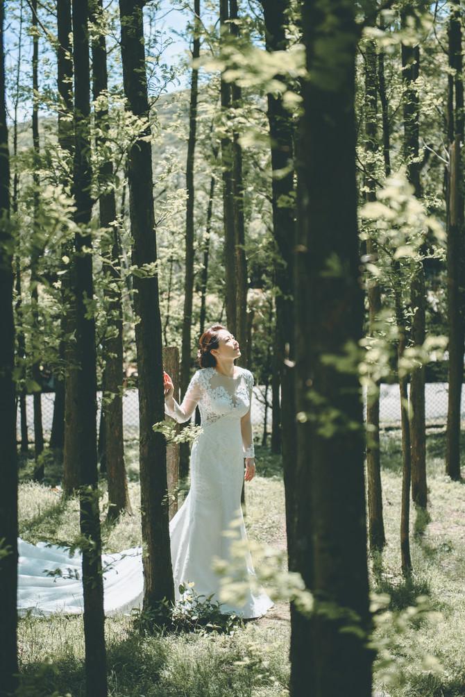 自主婚紗 - Nick & Kristen