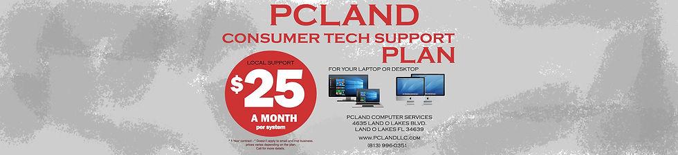 Consumer tech support plan.jpg