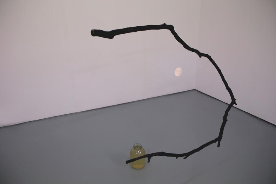 'Thurso moon'