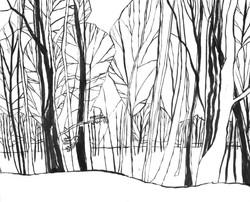Banstead Woods, Surrey