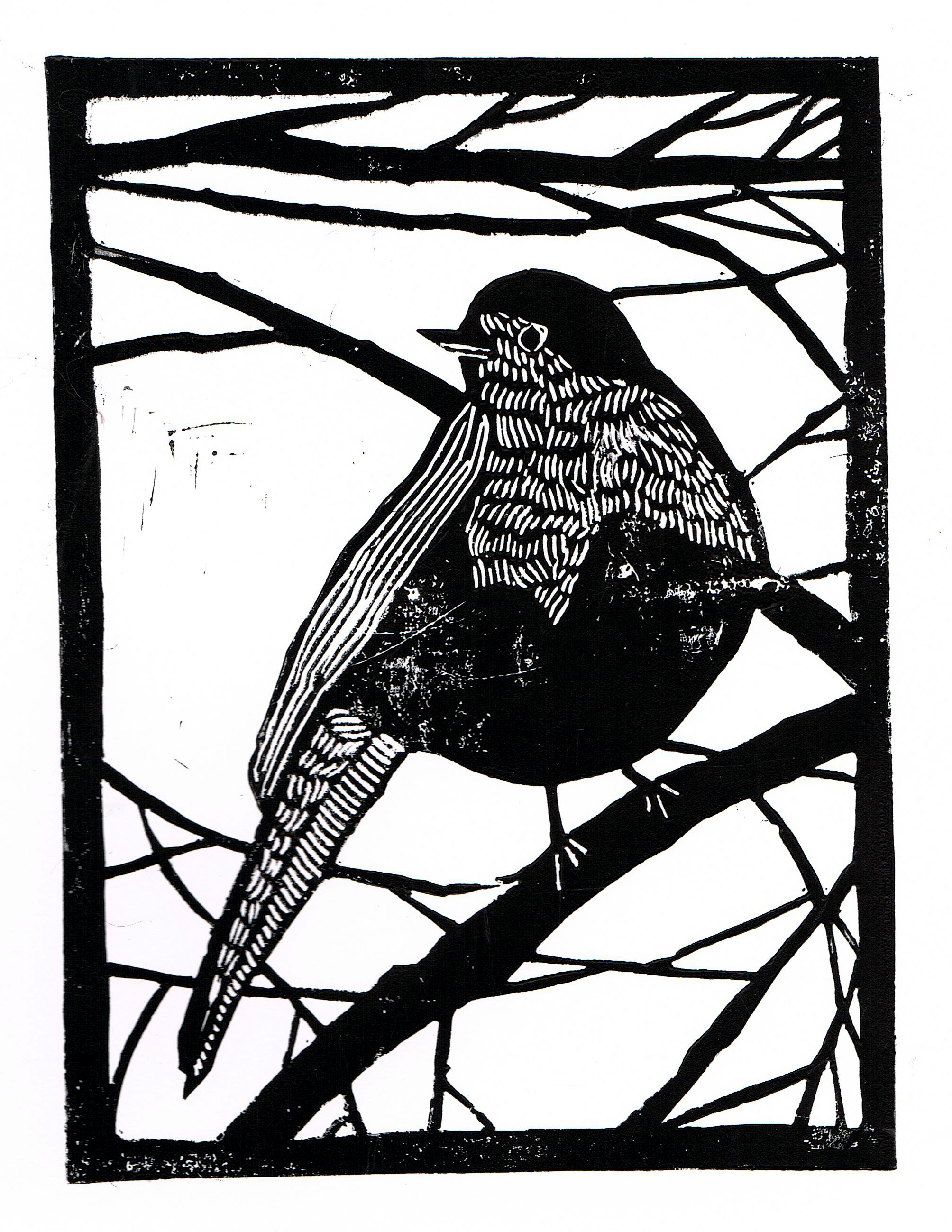 'Winter Robin'