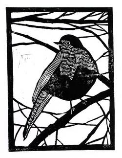 'Winter Robin'