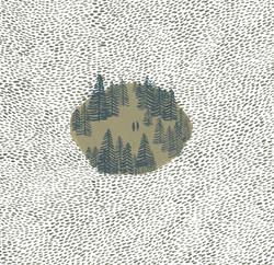 Wilde's Forest