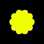 checkmark yellow icon.png