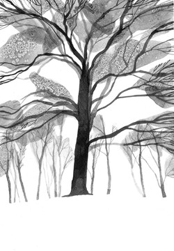 'Banstead Woods III'