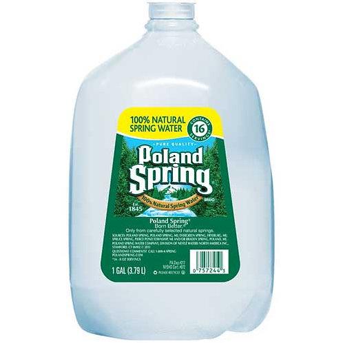 Natural Spring Water, 1 Gallon, 6/CT