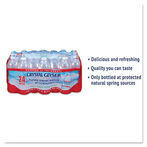 Alpine Spring Water, 16.9 oz