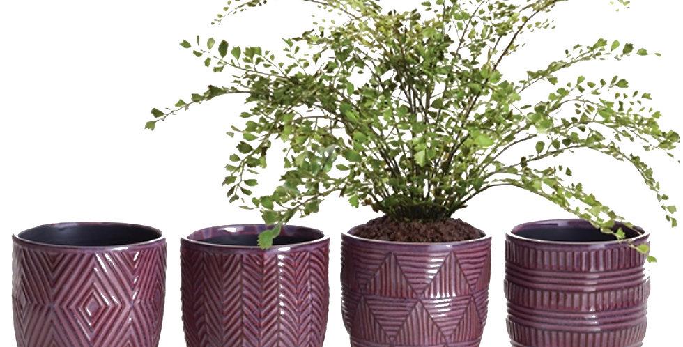 Plum Etched Pot