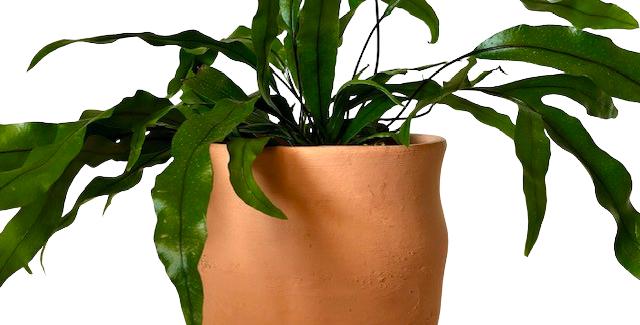 Vase Shaped Clay Pot