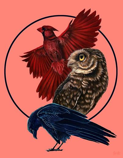 Bird Kin Messages.jpg