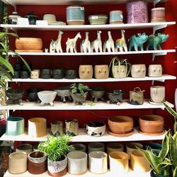 Local Ceramicists