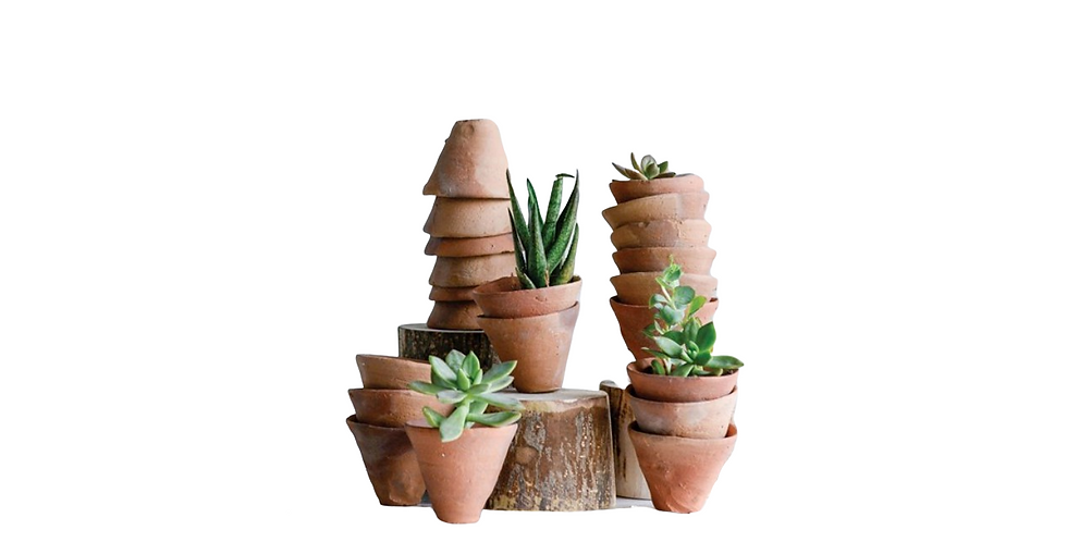 Set of 5 Tiny Terracotta Pots