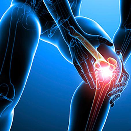 Conheça os 5 mandamentos para prevenir lesões no joelho em trekkings