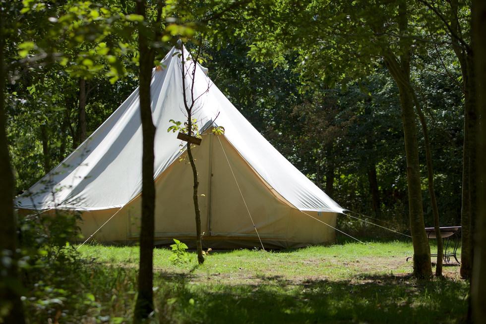 bell tent exterior through woods woodlan