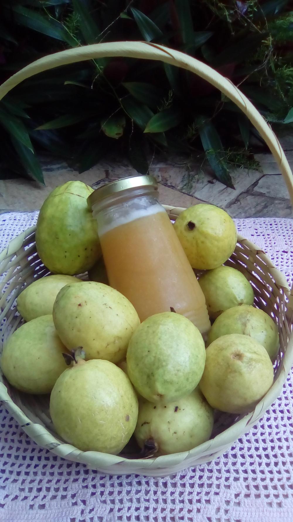 Beautifully Organized Guava Jelly