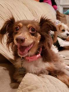 Raina smiling.jpg