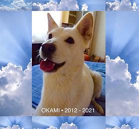 Okami Closeup.jpg