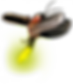 firefly-insect-png-2.png