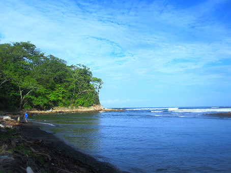 Walking this morning, jungle,river and the Ocean