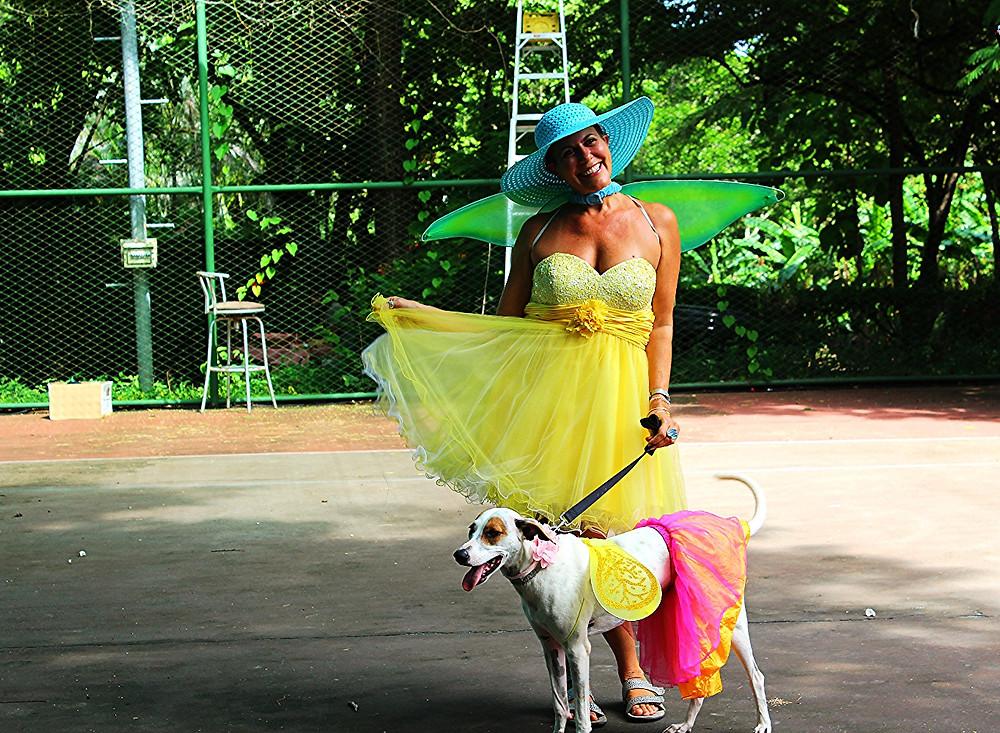 Costa Rica dog show