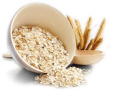 oat png.png