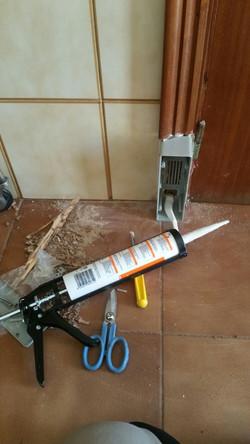 Control de termitas