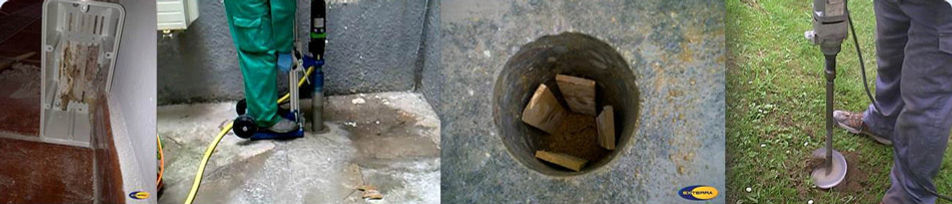 Instalación de cebos contra termitas