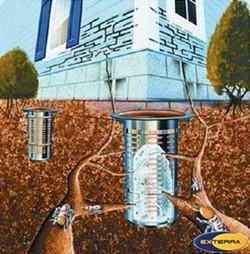 Eliminacion de colonias de termitas