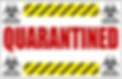 QuaratinedGraphic1_edited.jpg