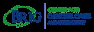 brig logo.png