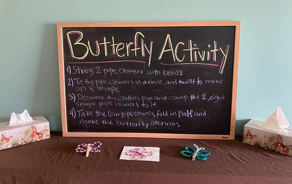 Butterfly Activity