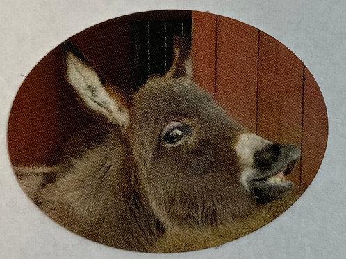 New Churro Sticker