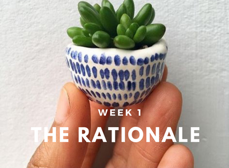 The Rationale - You Are The Little Plant