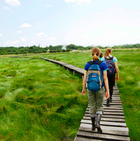 Semliki-National-Park.jpg
