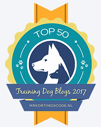 www.northdublindogtraining.com