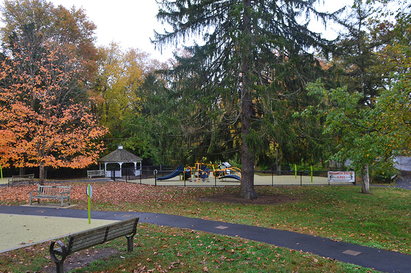 Chestnut Hill Park, Stamford_CT Mature trees saved