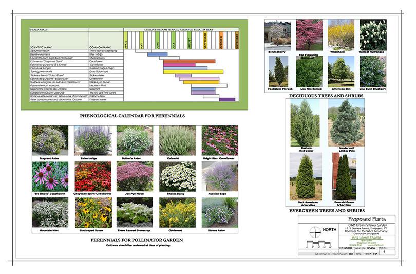 Concept Plan Plants1000x667.jpg