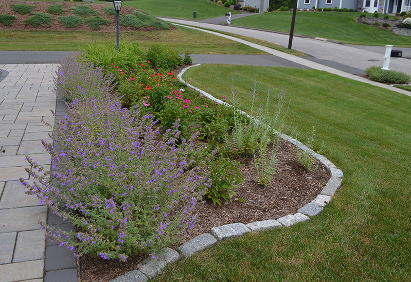 Front perennial bed .jpg