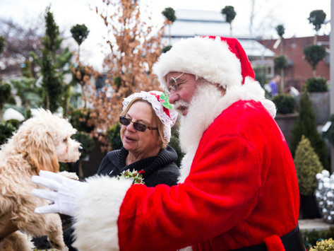 Thanks for Visiting Our 2019 Holiday Open House!
