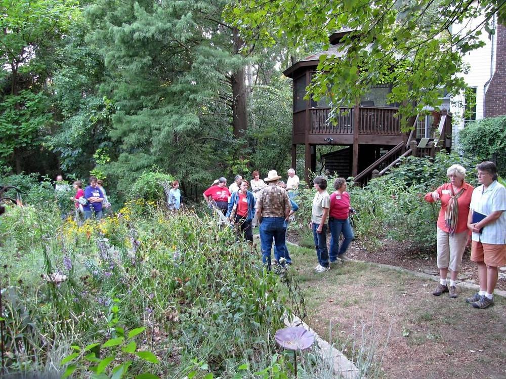 St. Louis Native Plant Garden Tour