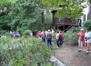 St. Louis Native Plant Garden Tour 2018