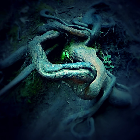 "Redwood Knot - In ""Artemis Journal, 2014"""