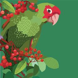 parrot insta 2-01