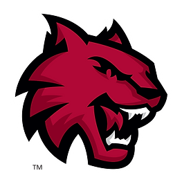 CWU_wildcat_spirit_mark_RGB.png