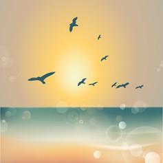 sunset3-01.jpg