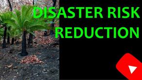 Disaster Risk Reduction Worldwide