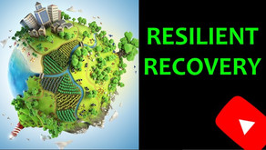 Resilient Recovery