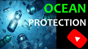 Protecting our Oceans