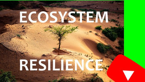 Resilient Ecosystems