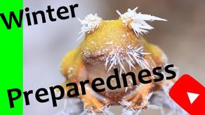 Winter Prep Tips